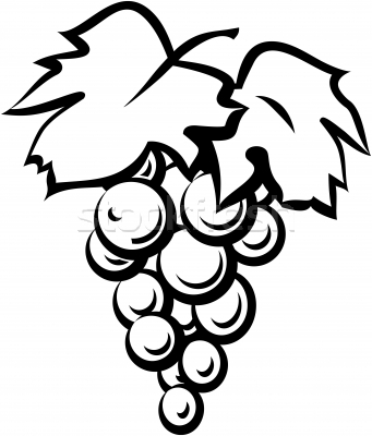 grapes clipart black and white. clipart info grapes black and white
