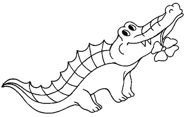 alligator coloring pages | clipart panda - free clipart images - Alligator Clip Art Coloring Pages