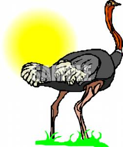 An Ostrich | Clipart Panda - Free Clipart Images