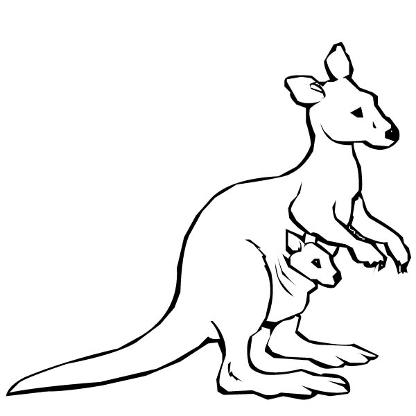 Baby Kangaroo Coloring Pages Australian And