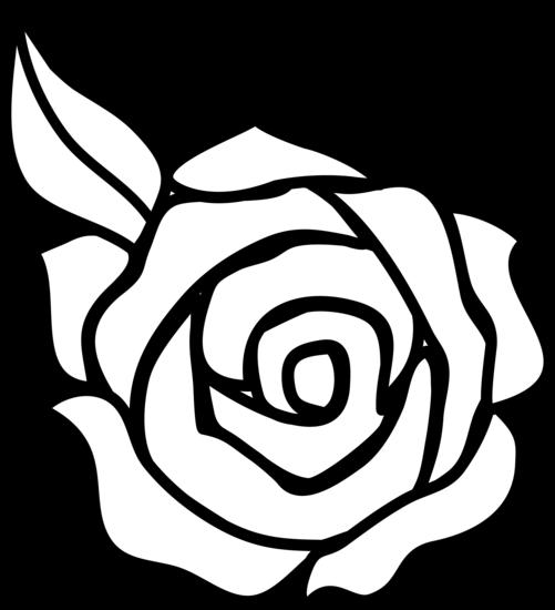 Black And White Rose Design