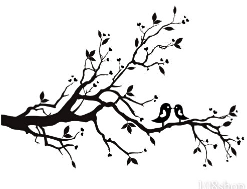 White tree branch wall decal high resolution photos