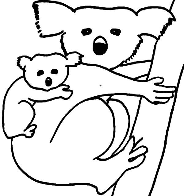 Coloring Page Koala Bear Clipart Panda Free Clipart Images
