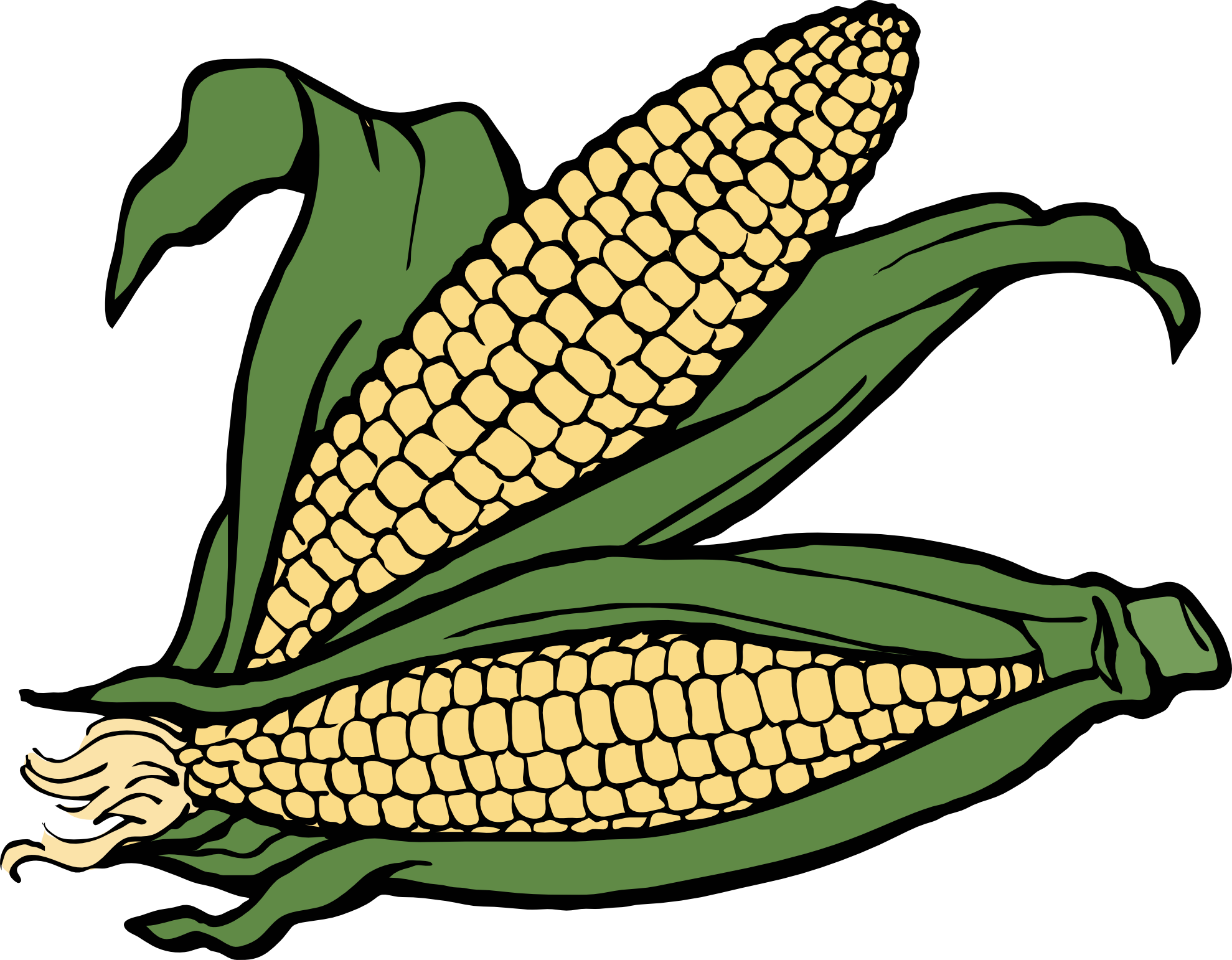 corn coloring book | Clipart Panda - Free Clipart Images