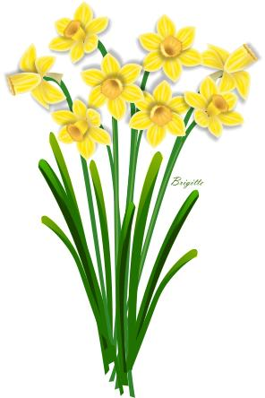 daffodil flower clip art clipart panda free clipart images rh clipartpanda com daffodil clipart free daffodil clipart no background