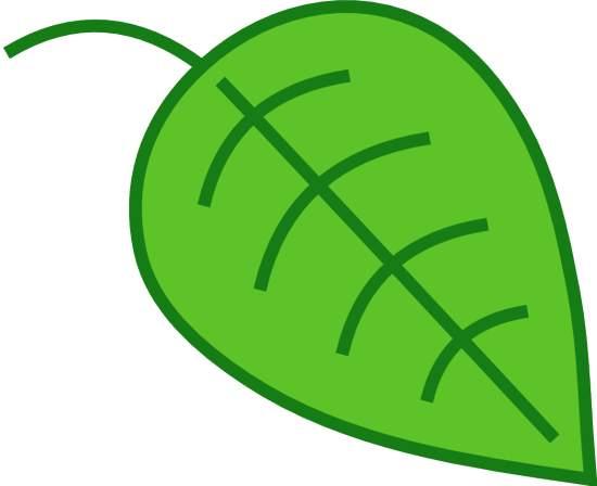 download this leaf clip art clipart panda free clipart images rh clipartpanda com leaf clip art pictures leaf clip art outline