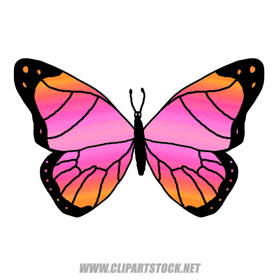 flying butterfly cartoon clipart panda free clipart images