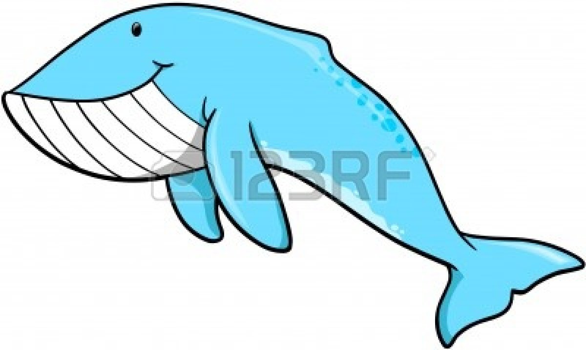 Uncategorized Blue Whale Drawing for blue whale drawings clipart panda free images info