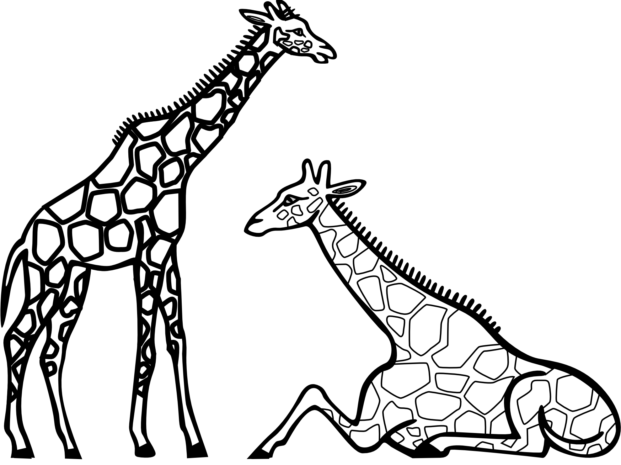 giraffes 2981 black white clipart panda free clipart images