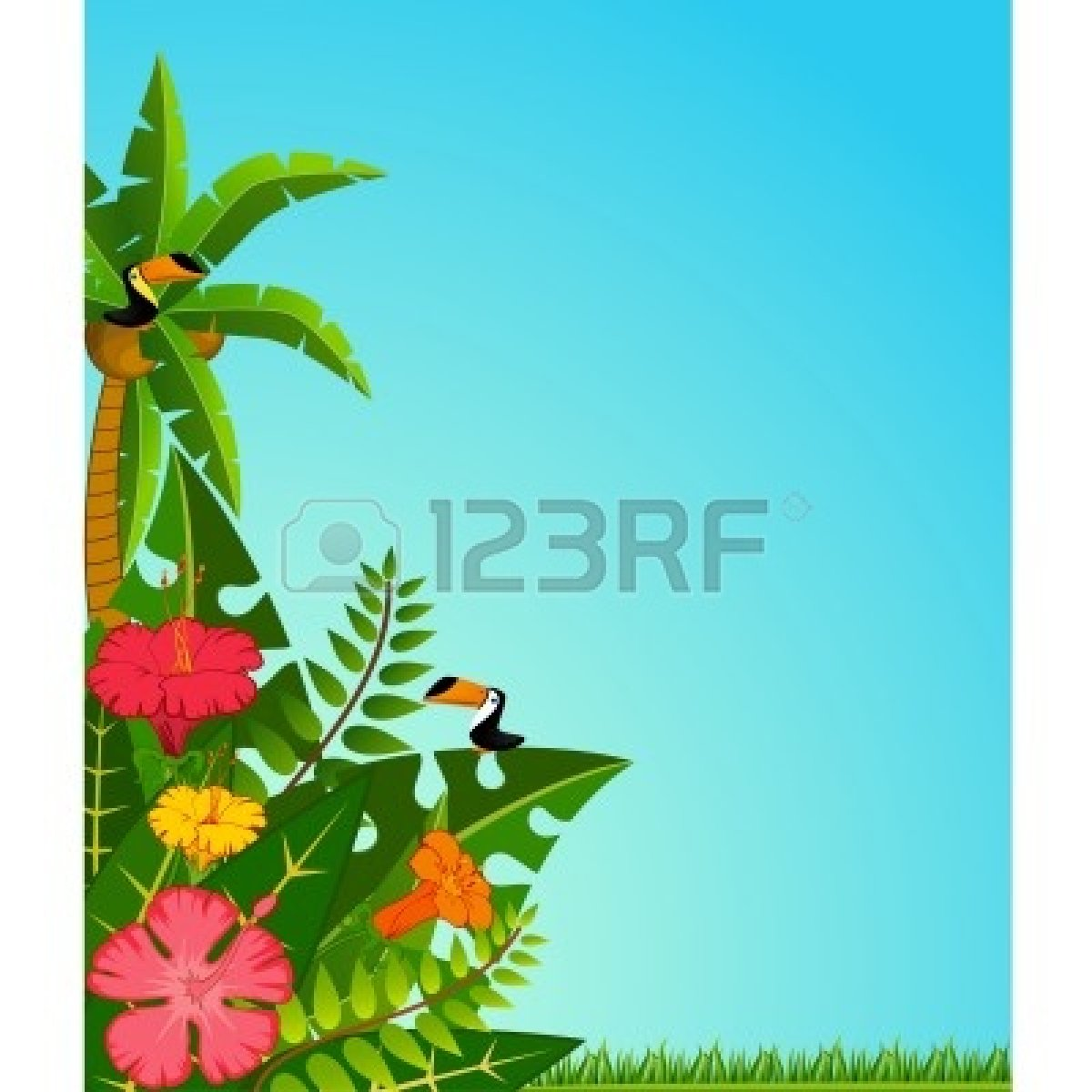 Blank Luau Invitation Borders Hawaiian Background