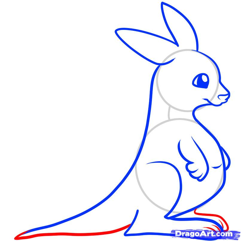 How To Draw A Kangaroo For