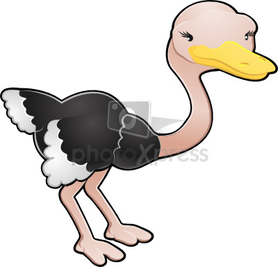 illustration ostrich clip art clipart panda free clipart images rh clipartpanda com ostrich clipart picture ostrich clipart picture