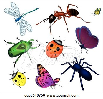 insects clipart clipart panda free clipart images rh clipartpanda com insects clipart with name cute insects clipart