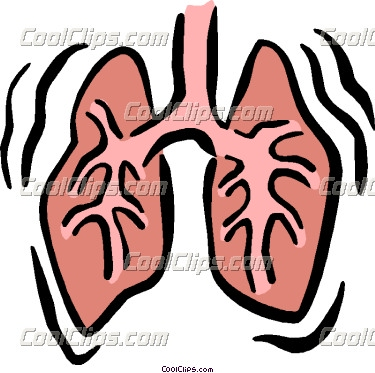 lungs clipart panda free clipart images rh clipartpanda com lungs clipart free lungs clipart gif