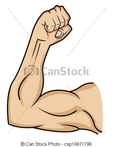 muscle clip art clipart panda free clipart images rh clipartpanda com muscle clipart images muscle clipart png