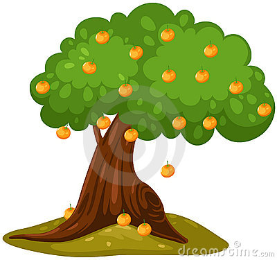Orange Tree 21652344 Jpg Clipart Panda Free Clipart Images