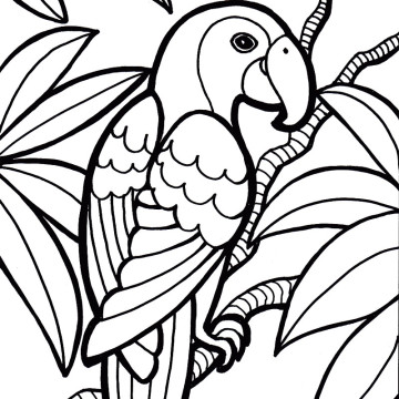 Parrot Bird Coloring Page Clipart Panda Free Clipart Images