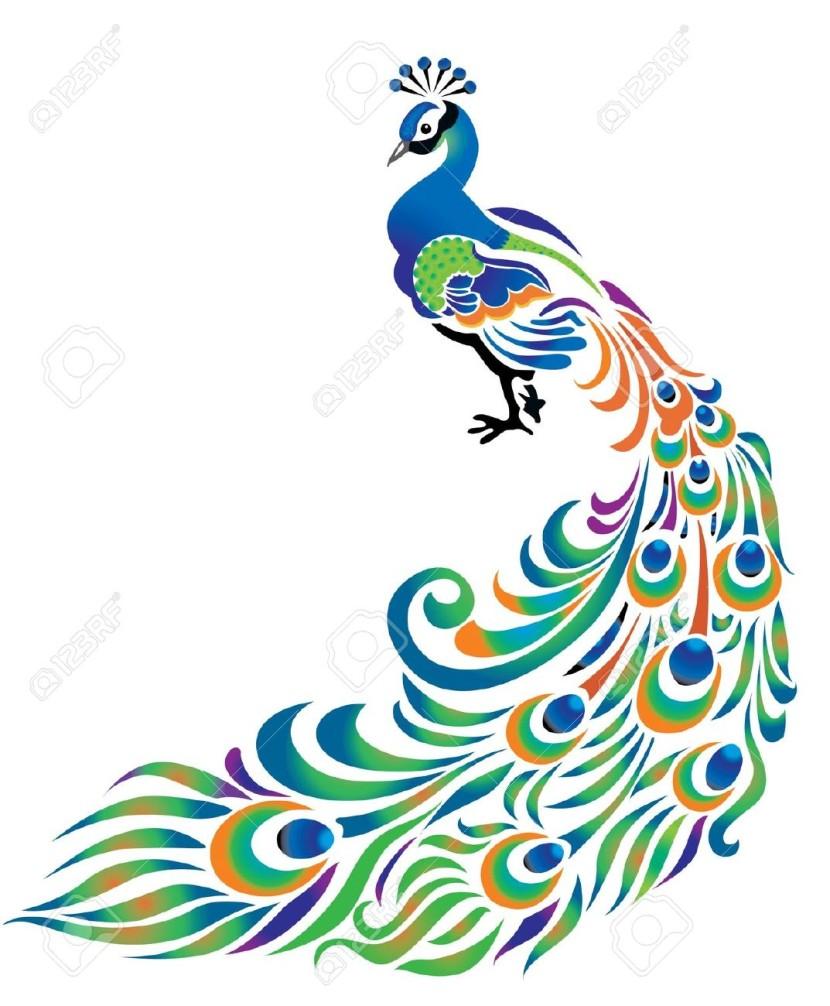 peacock design cliparts stock clipart panda free clipart images rh clipartpanda com cliparts co cliparts gram