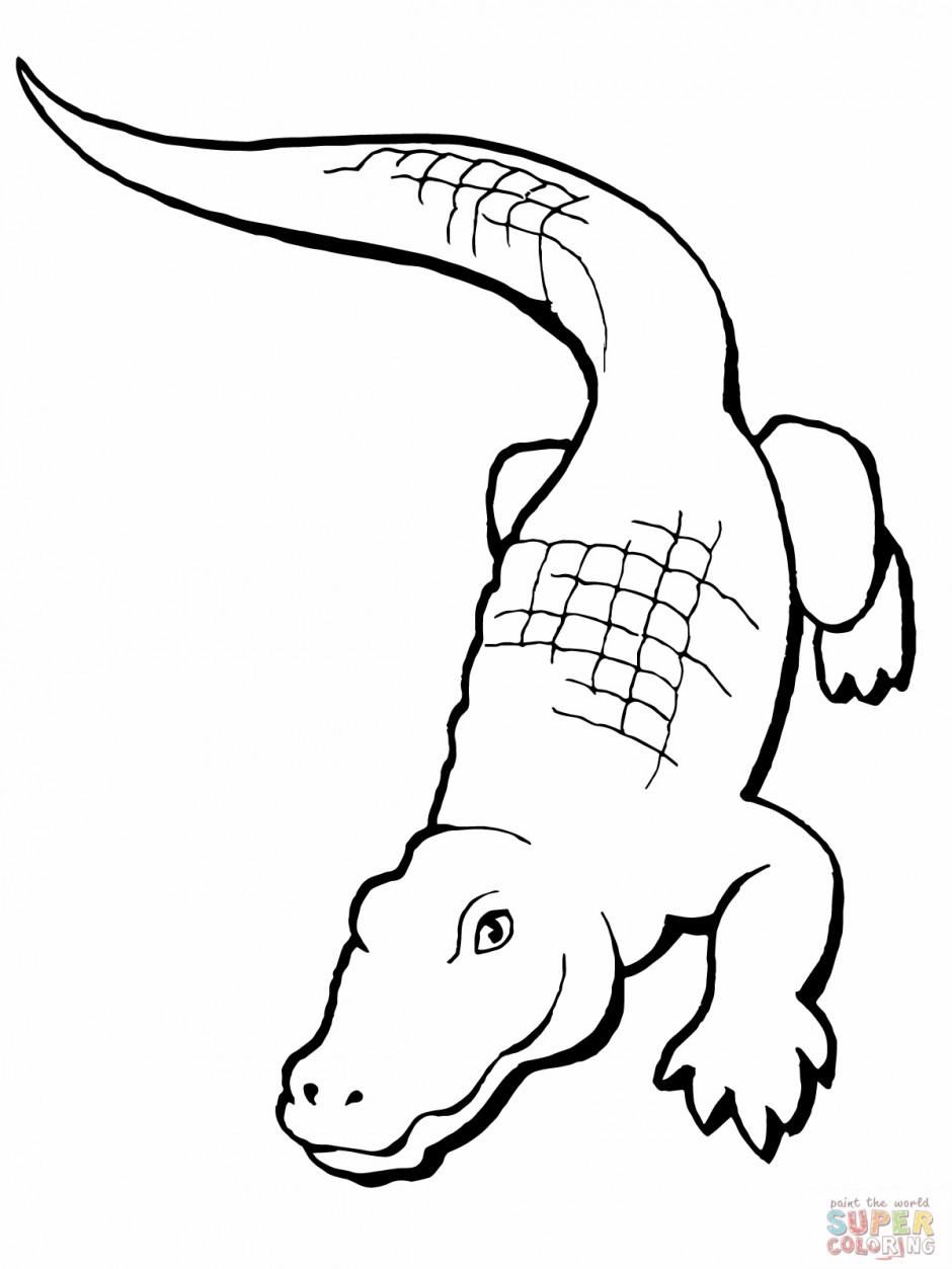 realistic alligator coloring clipart panda free clipart images rh clipartpanda com