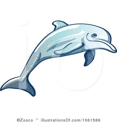 rf dolphin clipart clipart panda free clipart images rh clipartpanda com dolphin clipart free download free dolphin clipart illustrations