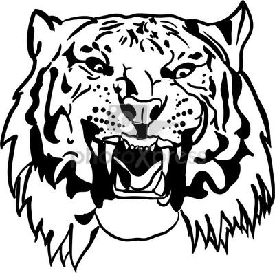 Vector Cat Tiger Eye Clipart Panda Free Clipart Images
