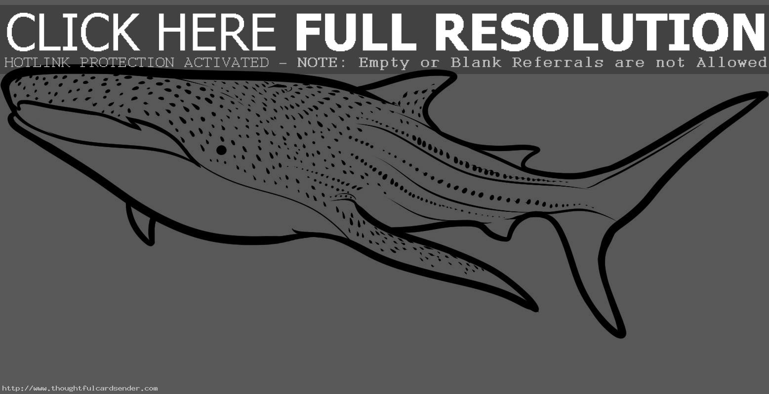 Whale Shark Coloring Pages Clipart Panda Free Clipart Images