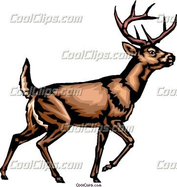 white tailed deer clipart panda free clipart images rh clipartpanda com Deer Clip Art Deer Clip Art
